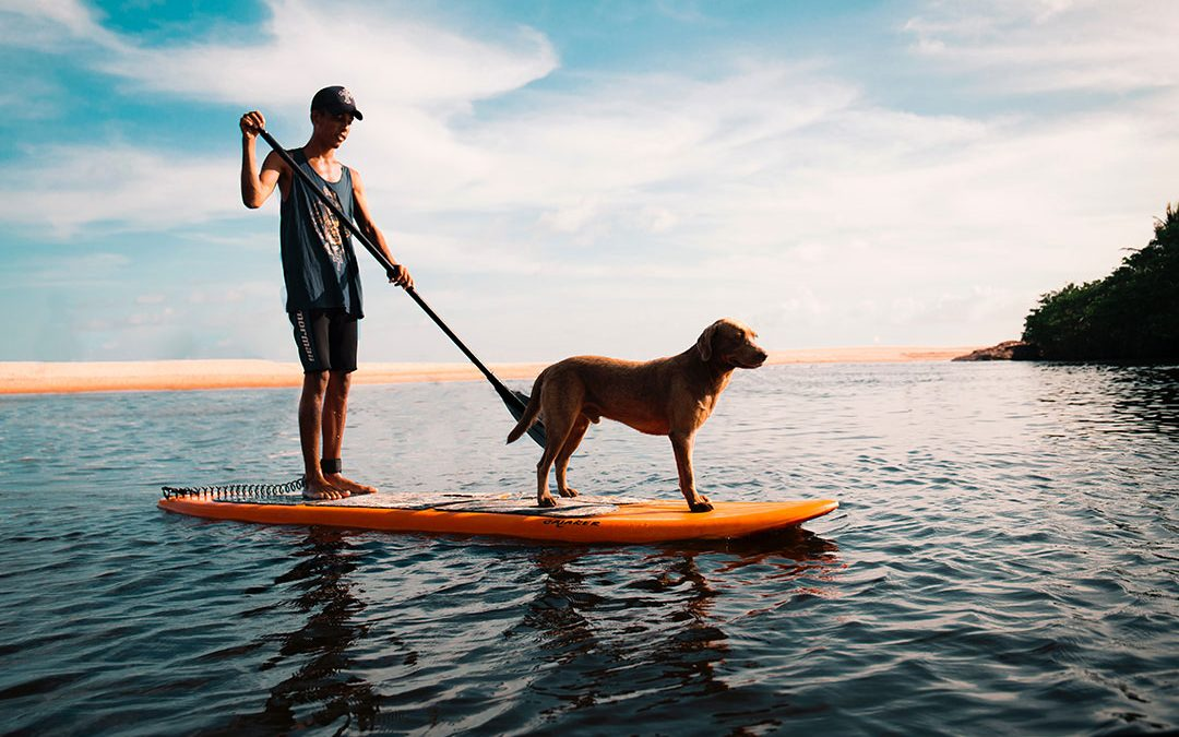 All dog-lovers know pups have a huge impact on our lives. Here's how man's best friend can help you live your best life