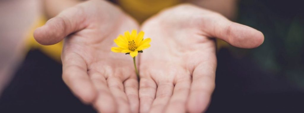 Tucson Mindfulness Group Counseling