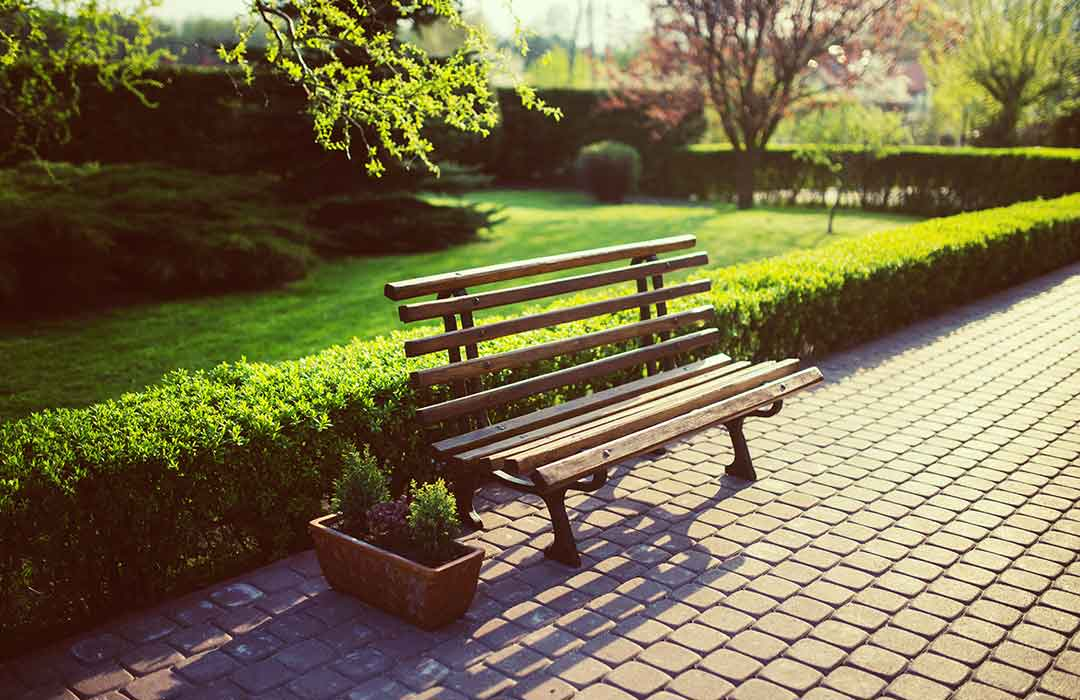 Green spaces have a positive impact on mental health (Video)