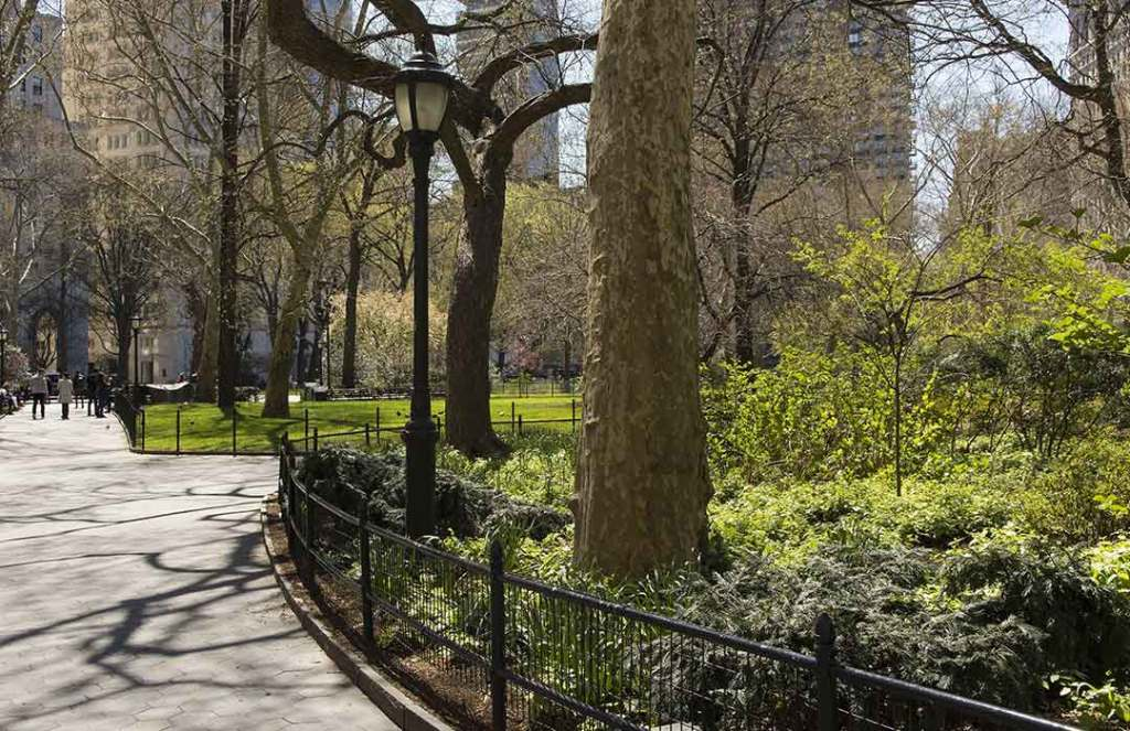 Spend a short time at the park and experience big mental health benefits (Videos)