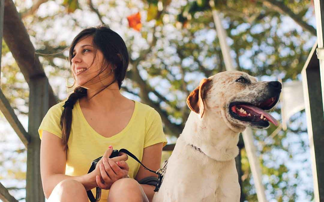 Similarities found in how we choose human and canine companions (Video)