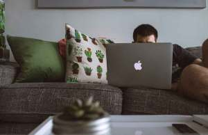 man sitting on gray couch on apple laptop with green plant pillows