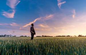 man standing in grass with blue sky
